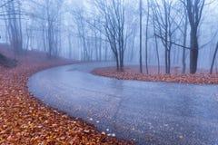Bergweg in de herfstkleuren stock fotografie