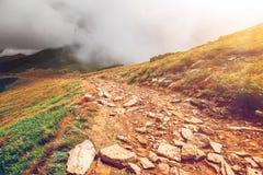 Bergweg in de Karpaten, de Oekraïne stock foto's