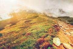 Bergweg in de Karpaten, de Oekraïne royalty-vrije stock afbeeldingen