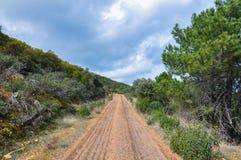 Bergweg door vegetatie wordt omringd die Royalty-vrije Stock Foto