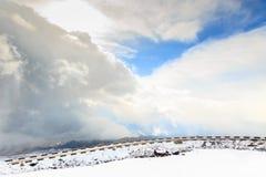 Bergweg door wolken wordt omringd die royalty-vrije stock afbeelding