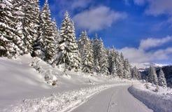 Bergweg met sneeuw wordt behandeld die royalty-vrije stock afbeeldingen