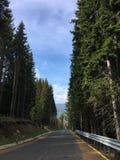 Bergweg in Roemenië Royalty-vrije Stock Afbeeldingen