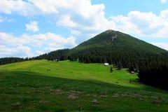 Bergweiland stock afbeeldingen