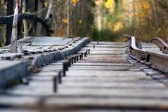 Bergwerk-Warenkorb-Bahnen Lizenzfreie Stockfotos