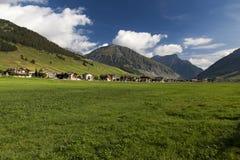 Bergwiese mit Häusern im Hintergrund Stockfotografie