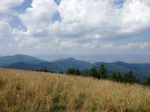 Bergwiesen - Slowakei, Lizenzfreie Stockfotos