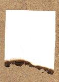 Bericht op het zand. Stock Foto