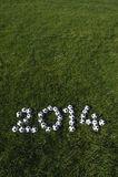 Bericht voor 2014 met de Ballen van het Voetbalvoetbal op Gras wordt gemaakt dat Royalty-vrije Stock Foto