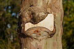 Berichtplaat op een boom royalty-vrije stock foto's