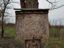 Berichtraad op de boom Stock Foto