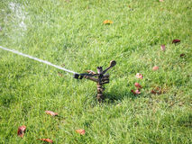 Berieselungsanlage, die das Gras im Garten wässert Stockfotos