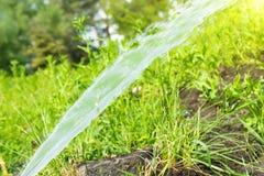 Berieselungsanlage, die den grünen Rasen wässert lizenzfreies stockbild
