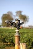 Berieselungsanlage für die Bewässerung Stockfoto