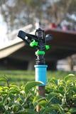 Berieselungsanlage für die Bewässerung Lizenzfreies Stockfoto