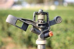 Berieselungsanlage für die Bewässerung Stockfotografie