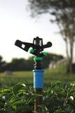 Berieselungsanlage für die Bewässerung Lizenzfreies Stockbild