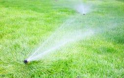 Berieselungsanlagenwasser auf dem Gras Stockfotos