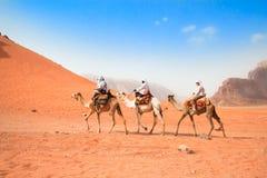 Berijden de toeristen kamelen in woestijn Royalty-vrije Stock Afbeeldingen