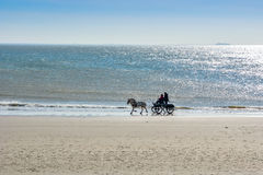 Berijdend op het strand in paardvervoer in Zoutelande, Holland Stock Afbeeldingen
