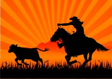 Berijdende cowboy Royalty-vrije Stock Foto