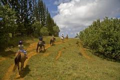 Berijdende horseback Stock Foto's