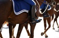 Berijdende paarden Stock Fotografie