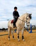 Berijdende tiener en grijs paard Stock Foto's