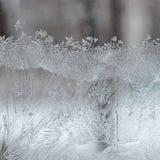 Berijpt de Wintervenster Stock Fotografie