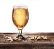 Berijpt glas bier op de houten lijst stock foto's