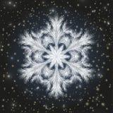 Berijpt sneeuwvlokbehang, vector vector illustratie
