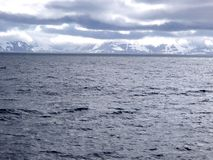 Bering-Insel das Bering-Meer, Kommandant Islands lizenzfreie stockfotos