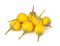 Beringela amarela no fundo branco Imagens de Stock