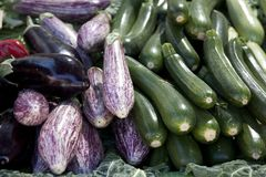 Beringela, beringela, Courgette e Zucchini Imagens de Stock
