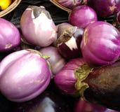Beringela, beringela siciliano, Greenmarket, Union Square, NYC, NY, EUA Fotografia de Stock Royalty Free