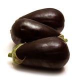 Beringelas ou plantas de ovo maduras Imagem de Stock