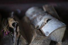 Berk firewoods met roze gelijken voor open haard, plattelandsstijl stock fotografie