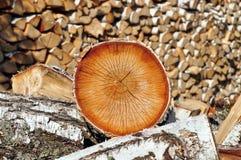 Berkbrandhout stock afbeeldingen