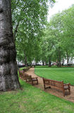 Berkeley Square, mayfair Royalty Free Stock Images
