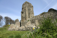 Berkhamsted castle ruins hertfordshire england. Ruined flint walls of berkhamsted castle in hertfordshire uk with spring daffodils and clear blue sky royalty free stock photography