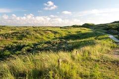 Berkheide dunes Stock Photo