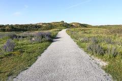 Berkheide dunes Royalty Free Stock Photo
