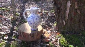 Berksap in de lente die van spon in ceramische kruik druipen stock footage
