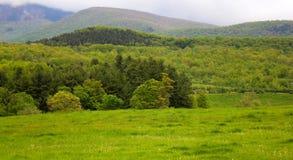 Berkshires nel paesaggio occidentale di Massachusetts Immagini Stock