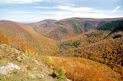 Berkshiresheuvels in de recente Herfst, de Vultrechter royalty-vrije stock afbeeldingen