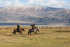 Berkutchi Eagle Hunter bei der Jagd zu den Hasen mit von Steinadlern auf seinen Armen in den Bergen von Bayan-Olgiiaimag Lizenzfreie Stockfotos