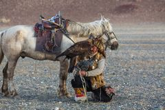 Berkutchi Eagle Hunter with golden eagle during hare hunting. SAGSAY, MONGOLIA - SEP 28, 2017: Berkutchi Eagle Hunter with golden eagle during hare hunting, in Royalty Free Stock Photography