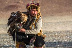 Berkutchi Eagle Hunter with golden eagle during hare hunting. SAGSAY, MONGOLIA - SEP 28, 2017: Berkutchi Eagle Hunter with golden eagle during hare hunting, in Stock Image