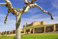 Berlanga de Duero Castillo Royalty Free Stock Photos
