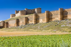 Berlanga de Duero Castle Royalty Free Stock Photo